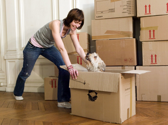Four Helpful Tips for Moving Interstate with Your Pet