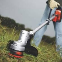 Hassle-Free Lawn Care Plano Residents Desire